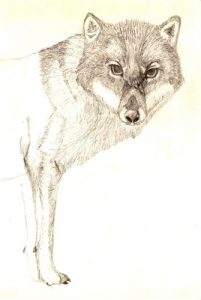 Art Lobo Wolf