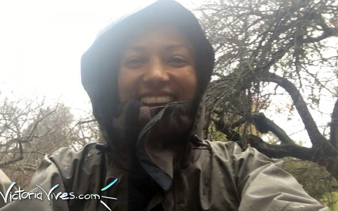 Rain or Shine… Daily Nature Walk!