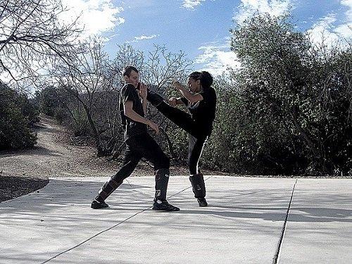Victoria Vives Martial Arts - Stone