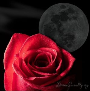 Victoria Vives - The Flower Moon
